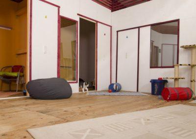 Katzenhaus 01 - Hundehotel Studer