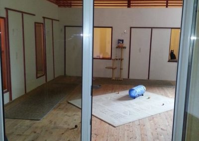 Katzenhaus 05 - Hundehotel Studer